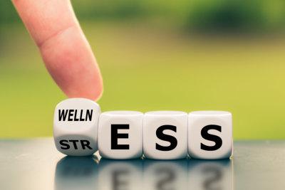 wellness dice